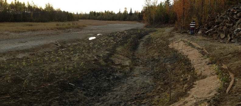 Tanana Lakes Wetlands Restoration Fairbanks, AK